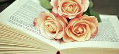 Dia del Llibre