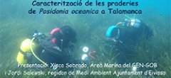 Presentació de l'estudi: Caracterització de les praderies de Posidònia Oceànica a Talamanca