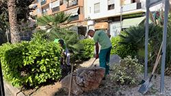 Jardineres ses Figueretes
