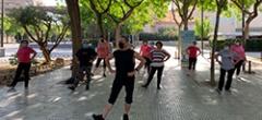 Classes gratuïtes de flamenc i esport